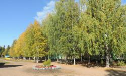Бобровниково