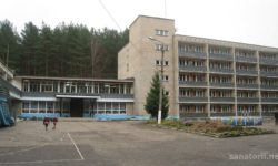 Алексин-Бор